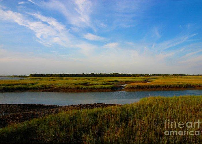 Marsh Greeting Card featuring the photograph Marshland Charleston South Carolina by Susanne Van Hulst