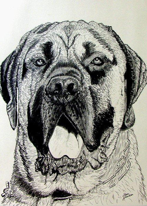Mastiff Greeting Card featuring the drawing Mastiff by Stan Hamilton