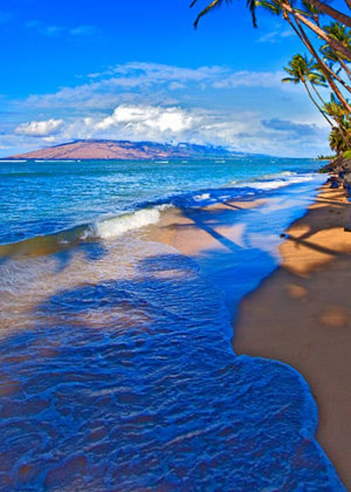 Maui Hawaii Palms Ocean West Maui Greeting Card featuring the photograph Maui Palms by James Roemmling
