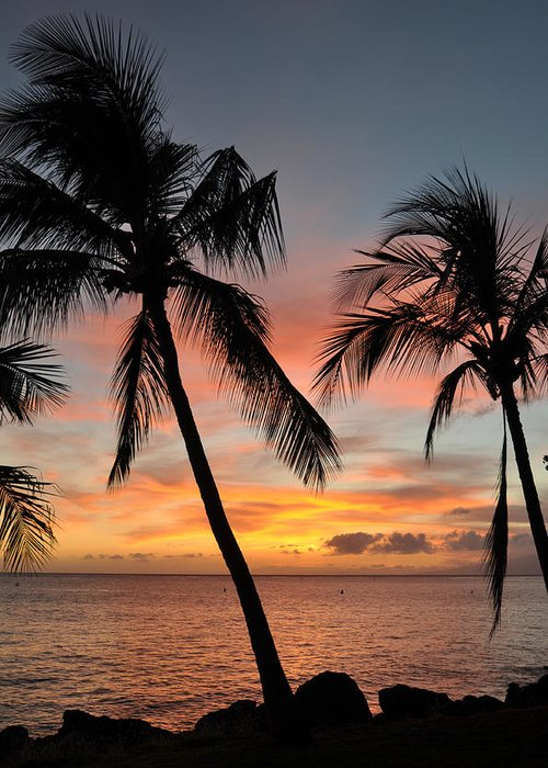 Maui Sunset Palms Greeting Card featuring the photograph Maui Sunset Palms by Kelly Wade