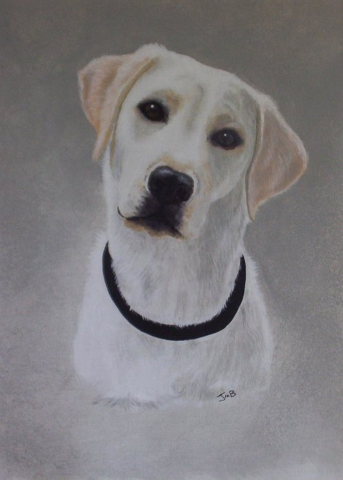 Pet Portrait Greeting Card featuring the painting Maxie by Janice M Booth