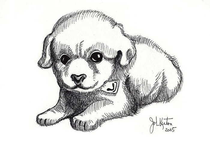 Puppies Greeting Card featuring the drawing Maya 3 by John Keaton