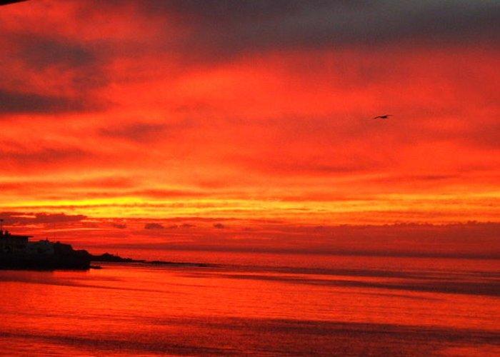 Sunset Greeting Card featuring the photograph Mazatlan Sunset by Allison Jones