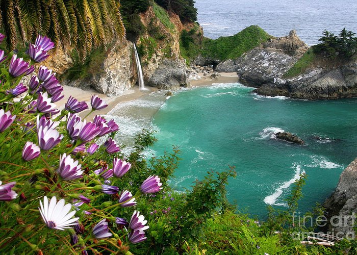 Mcwayfall Greeting Card featuring the photograph Mcway Falls by Buck Forester