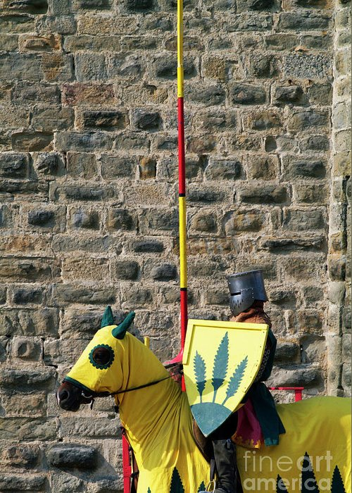 Adult Greeting Card featuring the photograph Medieval Knight On His Horse During A Show In Carcassonne by Sami Sarkis