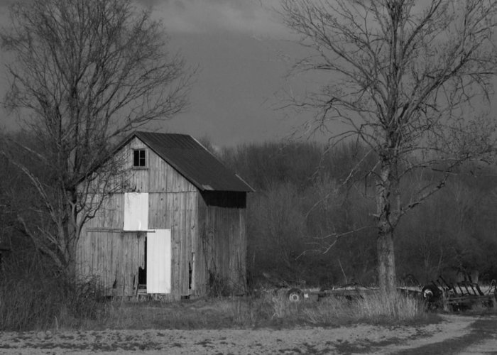 Shed Greeting Card featuring the photograph Medina Shed by Michael L Kimble