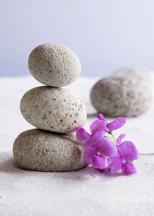 Meditation Greeting Card featuring the photograph Meditation Stones Pink Flowers On White Sand by Michelle Himes
