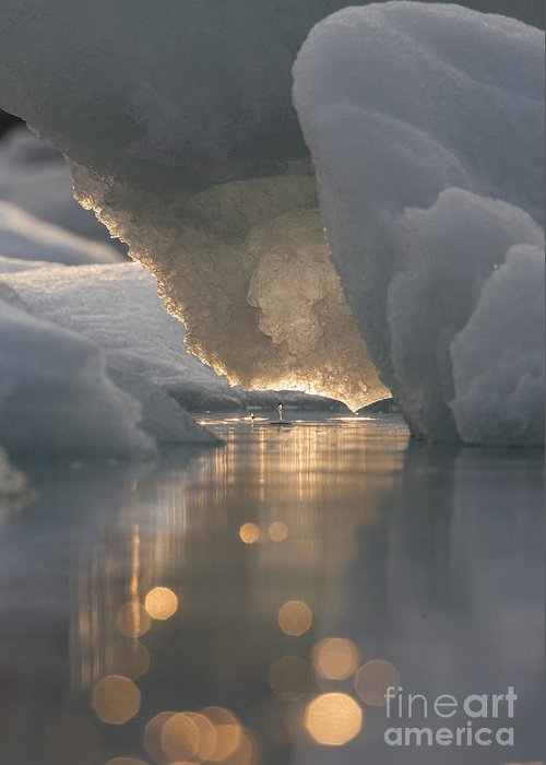 Ice Greeting Card featuring the photograph Melting Ice by Tim Grams