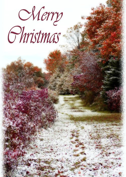 Snow Greeting Card featuring the photograph Merry Christmas Colours And Snow by Cathy Beharriell