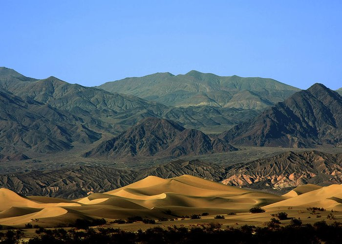 Death Valley National Park Greeting Card featuring the photograph Mesquite Flat Sand Dunes - Death Valley National Park Ca Usa by Christine Till