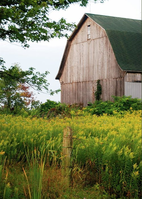 Old Barn Greeting Card featuring the photograph Michigan Barn by Michael Peychich
