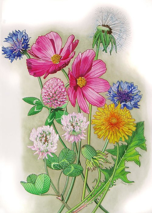 Flowers Greeting Card featuring the painting Midsummer Day Dream by Vlasta Smola