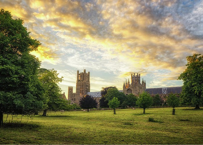 Architecture Greeting Card featuring the photograph Midsummer Evening In Ely by James Billings