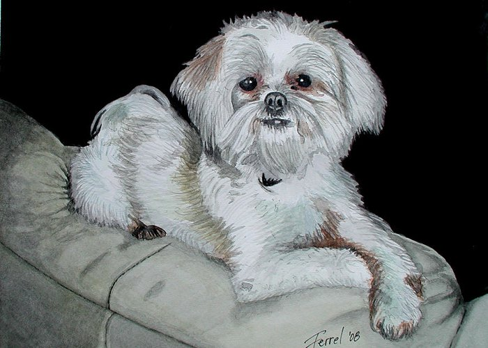 Dog Greeting Card featuring the painting Miki Dog by Ferrel Cordle