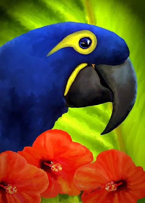 Hyacinth Macaw Greeting Card featuring the painting Mimi by David Wagner