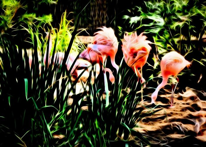 Flamingos Greeting Card featuring the photograph Mine by Kristalin Davis