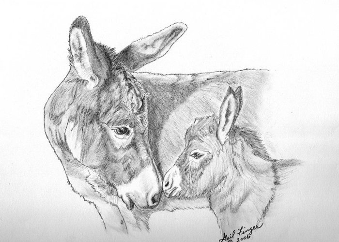Equine Greeting Card featuring the drawing Mini Donkey Mom And Baby by Gail Finger