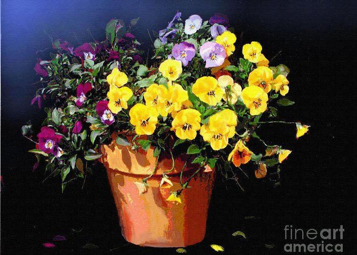 Pansy. Still Life Greeting Card featuring the painting Mini Pansy Pot by Robert Foster