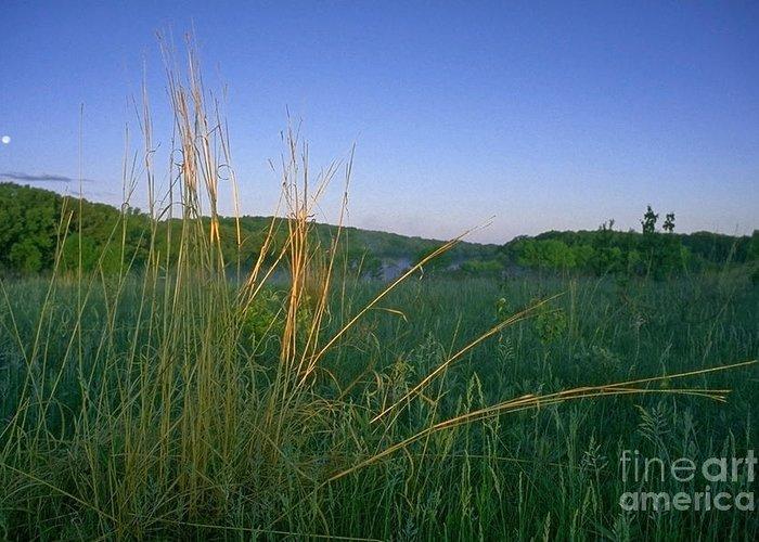 Prairie Greeting Card featuring the photograph Minnesota Prairie Moon Rise by Sven Brogren