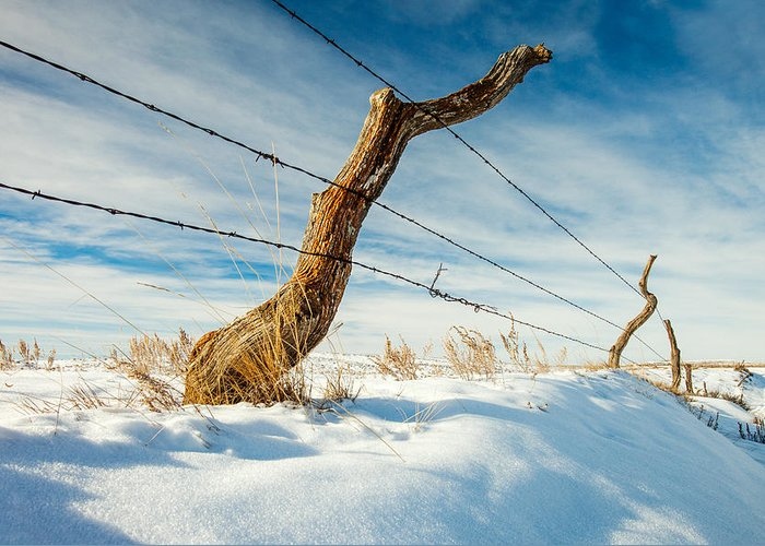 Crooked Fence Greeting Cards