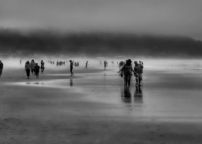 Mist Greeting Card featuring the photograph Misty Beach by David Patterson
