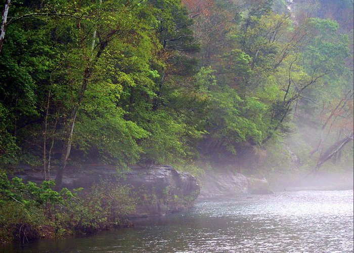 Buffalo National River Greeting Card featuring the photograph Misty Morning On The Buffalo by Marty Koch