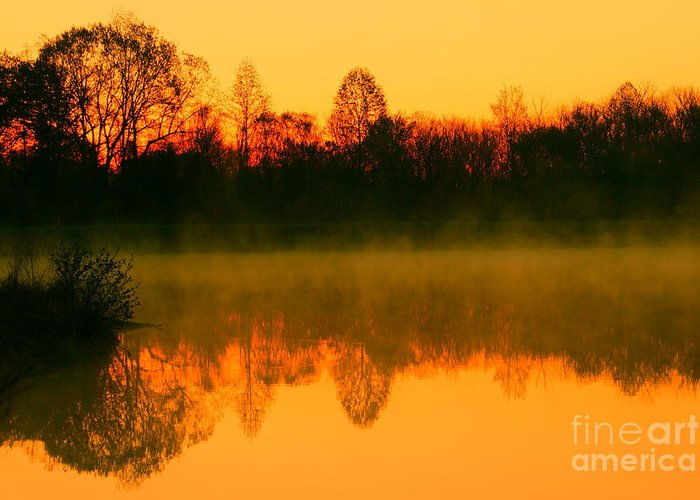 Golden Sunrise Greeting Card featuring the photograph Misty Sunrise by Morgan Hill