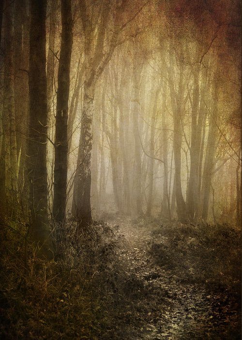 Aged Greeting Card featuring the photograph Misty Woodland Path by Meirion Matthias