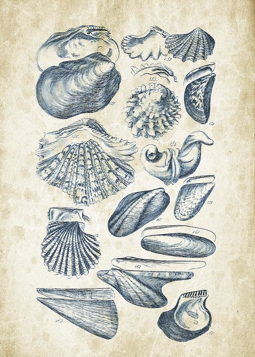 Mollusca Greeting Cards