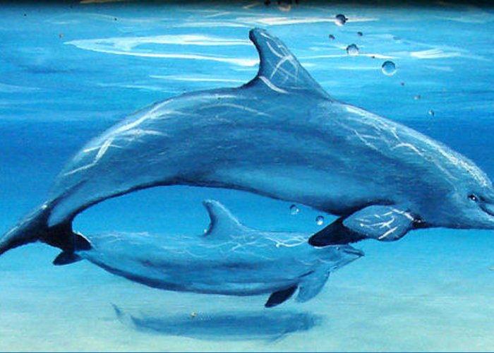 Dolphin Greeting Card featuring the painting Momma by Darlene Green