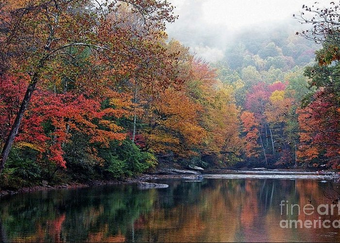 Fall Color Greeting Card featuring the photograph Monongahela National Forest by Thomas R Fletcher
