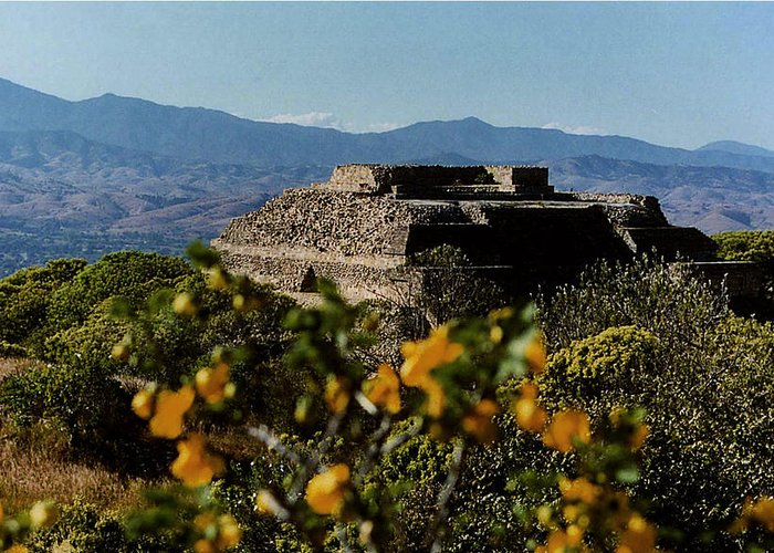 Indian Greeting Card featuring the photograph Monte Alban 4 by Michael Peychich