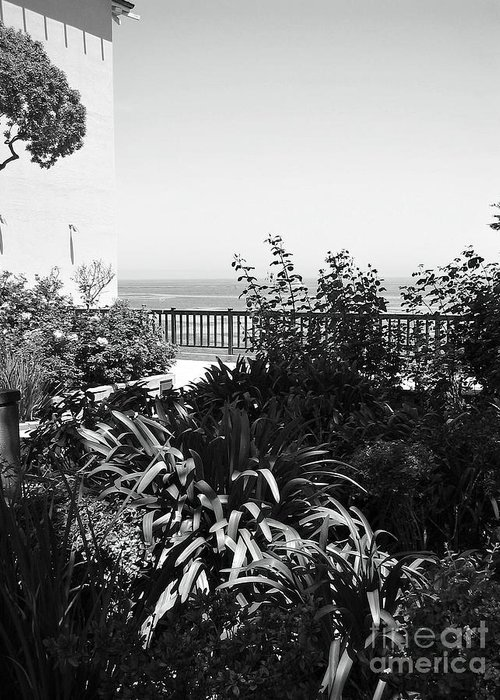 Ocean Greeting Card featuring the photograph Monterey Gardens Overlooking The Bay by Amy Delaine