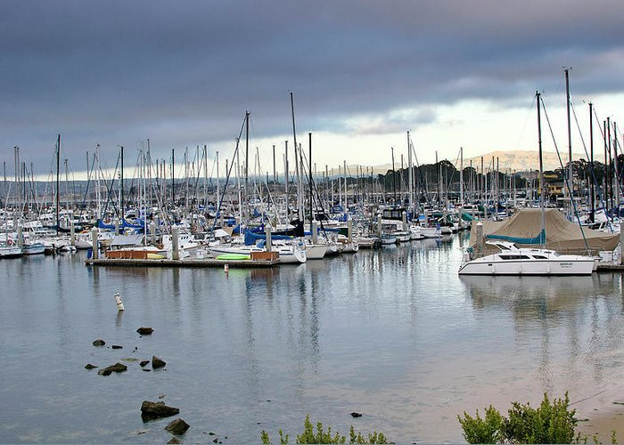 monterey Bay Greeting Card featuring the photograph Monterey Harbor - California by Brendan Reals