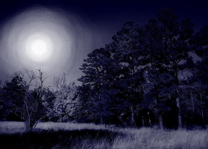 Dream Greeting Card featuring the photograph Moon And Dreams by Nina Fosdick