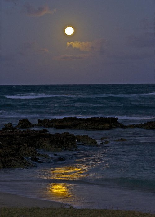 Moon Greeting Card featuring the photograph Moon Over The Beach 2 by Eddie Freeman
