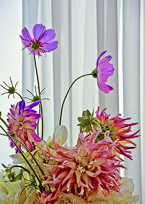 Flowers Greeting Card featuring the photograph More Formal Flowers by John Toxey