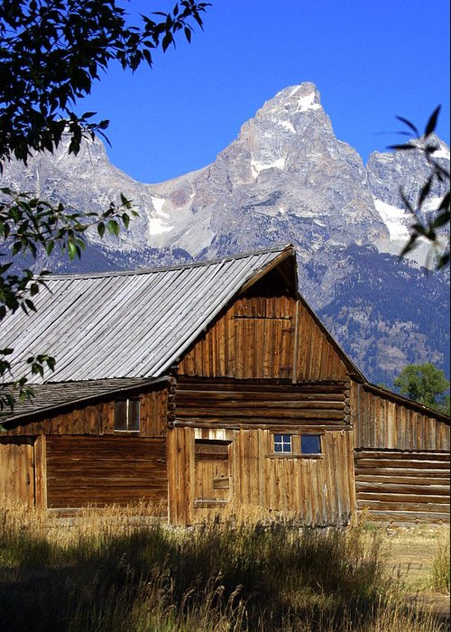 Barn Greeting Card featuring the photograph Mormon Row Barn 1 by Marty Koch