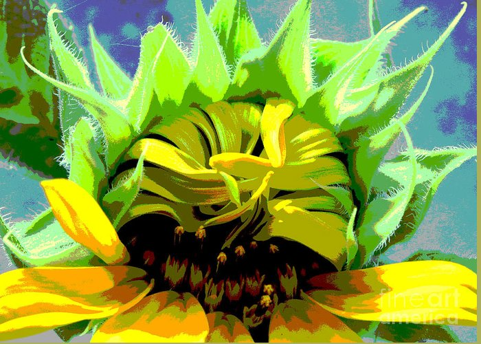 Sunflowers Greeting Card featuring the photograph Morning Awakening by Lori Mellen-Pagliaro