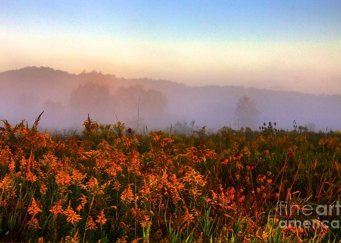 Sunrise Greeting Card featuring the photograph Morning Color-7 by Robert Pearson