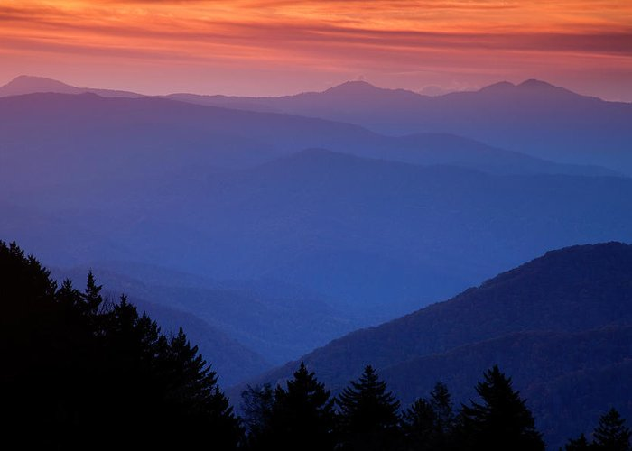 Smokies Greeting Card featuring the photograph Morning Colors In The Smokies by Andrew Soundarajan
