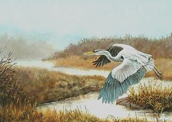 Heron Greeting Card featuring the painting Morning Flight by Syndi Michael