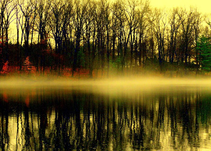 Lake View Greeting Card featuring the digital art Morning Fog by Aron Chervin