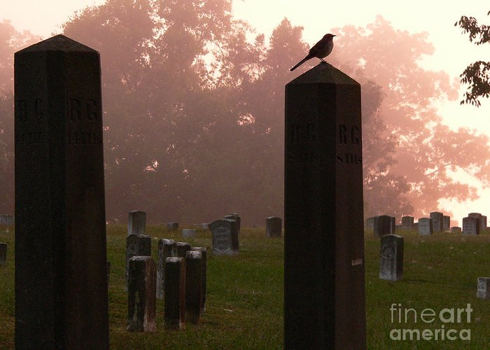 Shiloh Greeting Card featuring the photograph Morning Fog Along The Tennessee by David Bearden