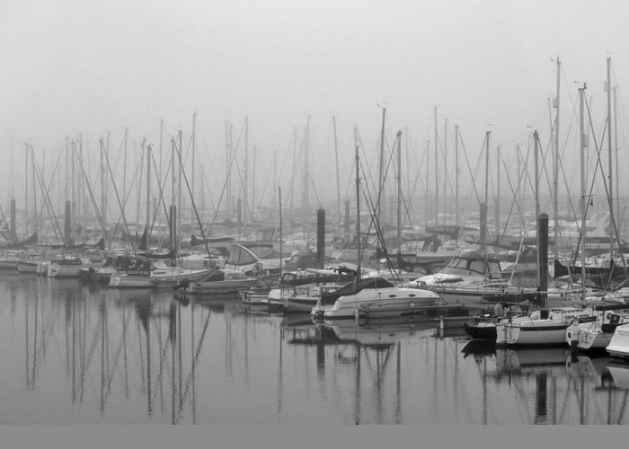 Black And White Greeting Card featuring the photograph Morning Fog by Terence Davis