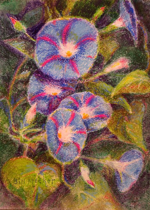 Floral Greeting Card featuring the painting Morning Glories by Bill Meeker