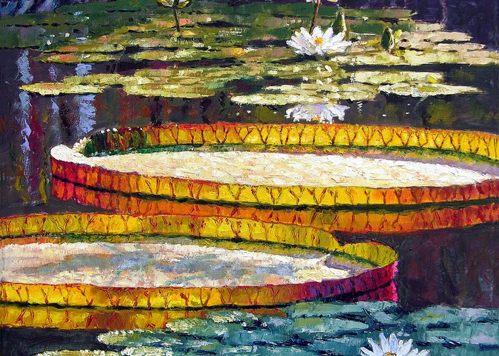 Water Lilies Greeting Card featuring the painting Morning Glow by John Lautermilch