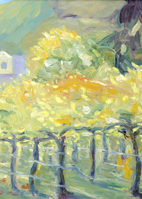 Napa Valley Vineyard Greeting Card featuring the painting Morning In Napa Valley by Barbara Anna Knauf