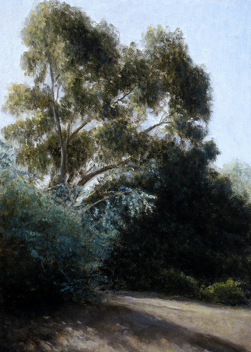 Eucalyptus Greeting Card featuring the painting Morning Light And Shadows by Laura Wynne