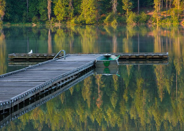 Dock Greeting Card featuring the photograph Morning Light by Idaho Scenic Images Linda Lantzy